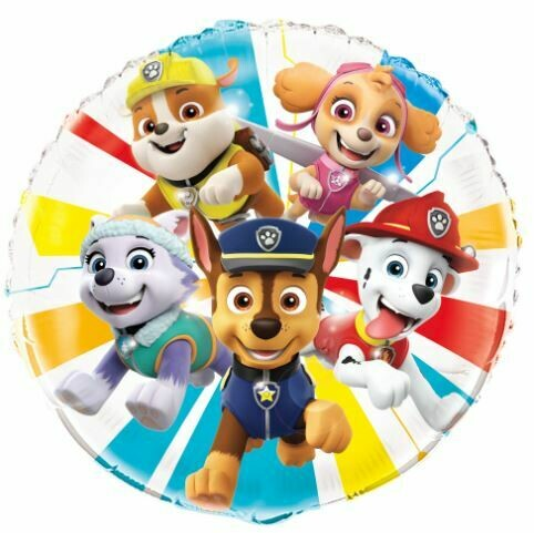 18 - PAW PATROL THE WHOLE GANG