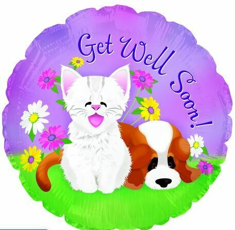 18 - GET WELL PUPPY AND KITTEN