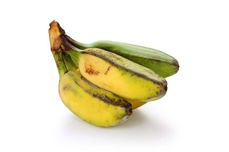 JED Señorita Banana