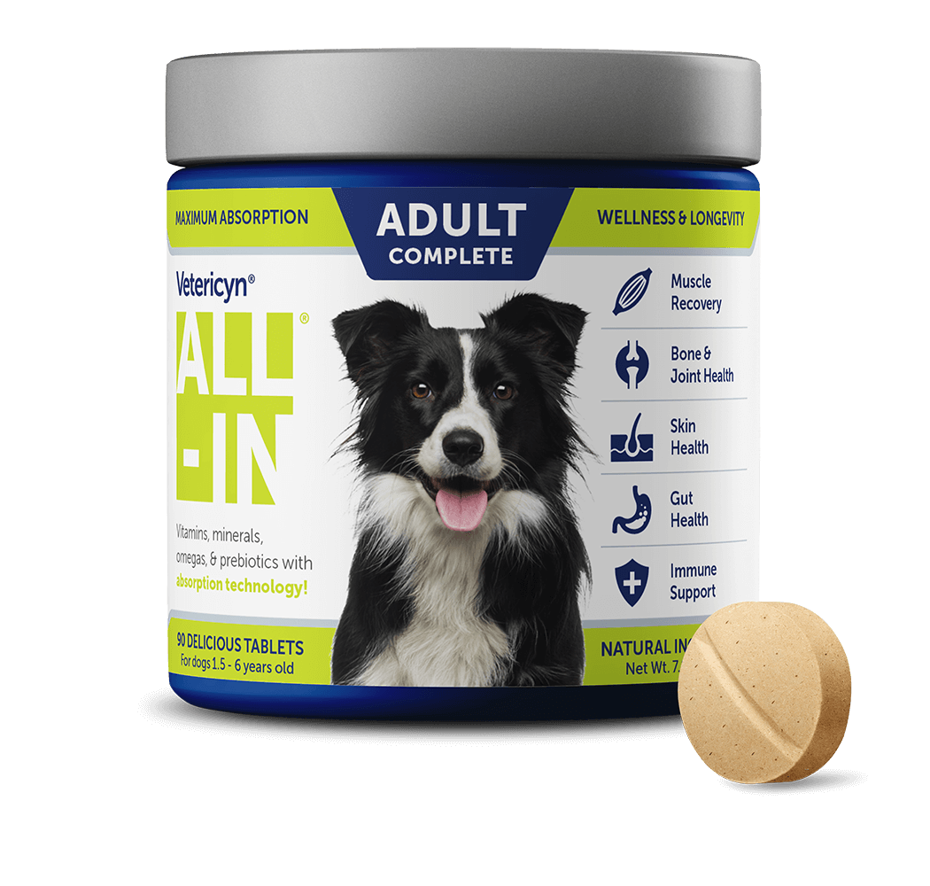 Vetericyn ALL-IN Adult Dog Supplement