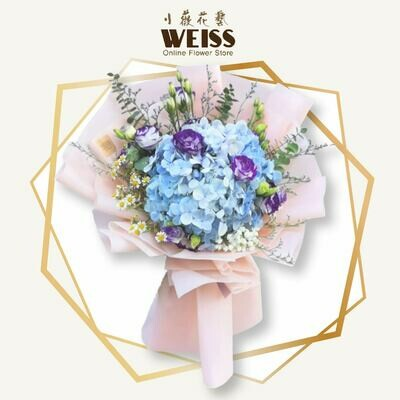 Weiss Florist Hydrangea (Free Shipping! Only deliver in JB)