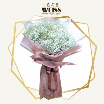 Weiss Florist Baby Breath (Free Shipping! Only deliver in JB)