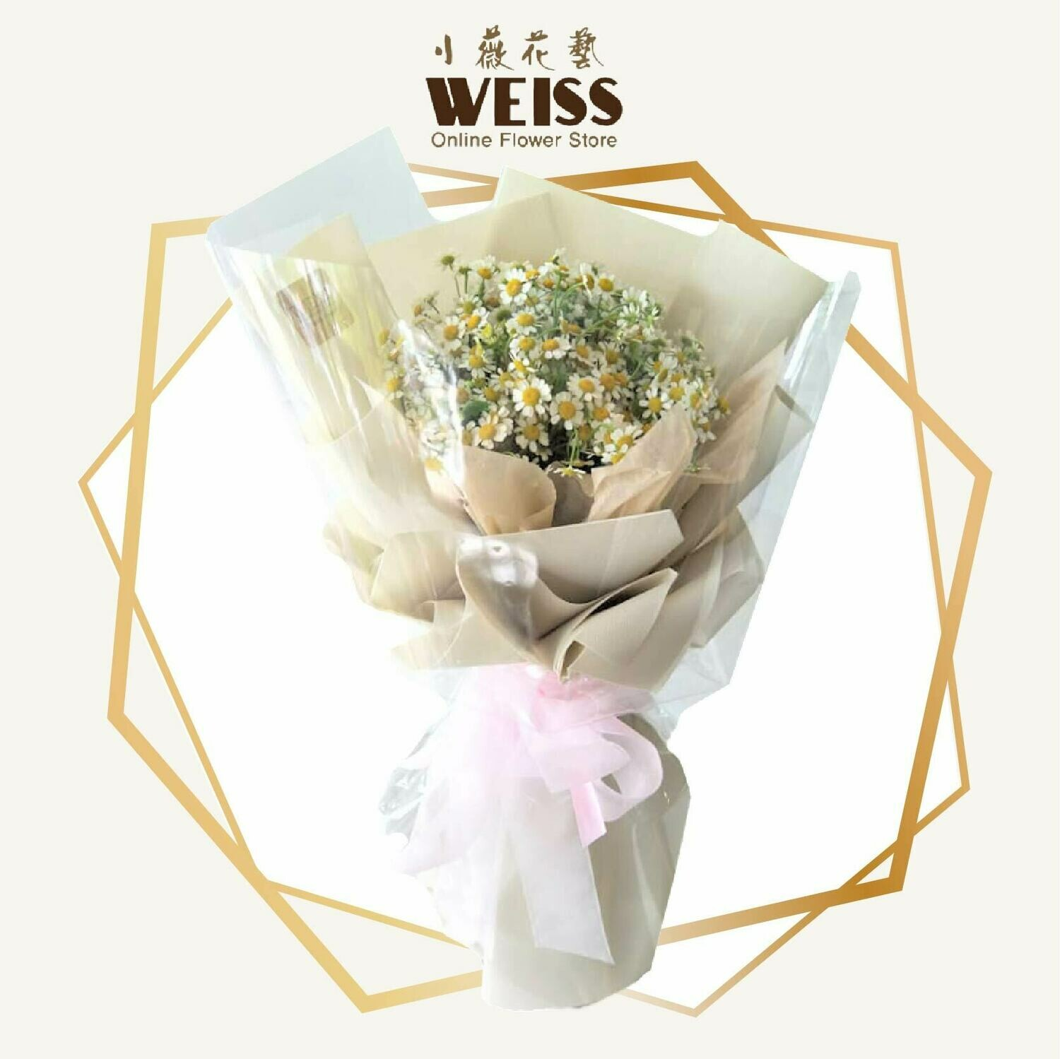 Weiss Florist Chamomile (Free Shipping! Only deliver in JB)