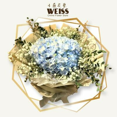Weiss Florist Hydrangea mixed baby breath (Free Shipping! Only deliver in JB)