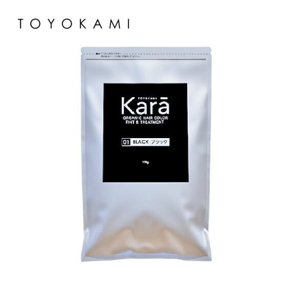 Toyokami Kara Organic Hair Color Tint & Treatment 100g