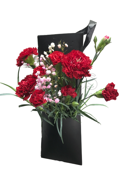 CARNATION IN BOX (By: Weiss Flora & Gift From JB)