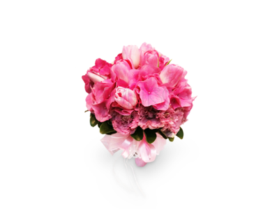 Elegance Pink (By: Weiss Flora & Gift From JB)