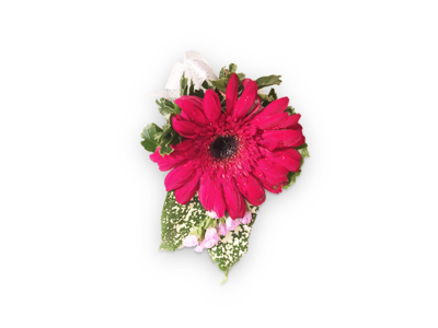 Red Gerbera Corsage (By: Weiss Flora & Gift From JB)