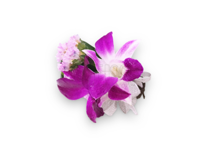 Purple Orchid Corsage (By: Weiss Flora & Gift From JB)