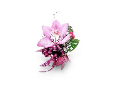 Purple Elegance Corsage (By: Weiss Flora & Gift From JB)