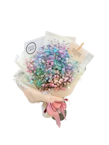 RAINBOW BABY BREATH (By: Weiss Flora & Gift From JB)