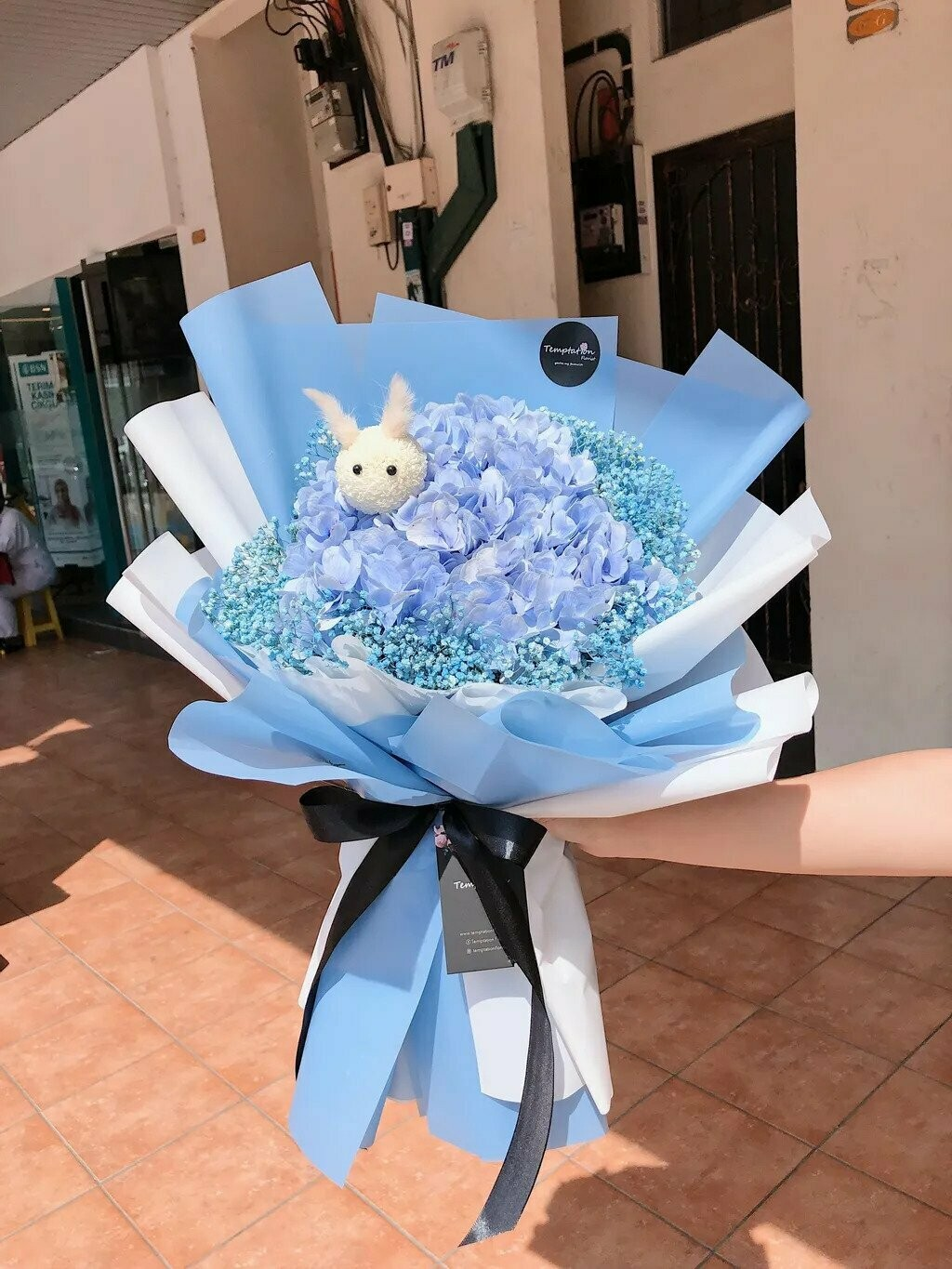 Seaweed (By: Temptation Florist from Seremban)