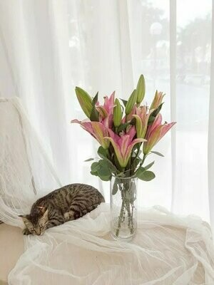 Blessed Lily (Fresh) (By: Temptation Florist from Seremban)