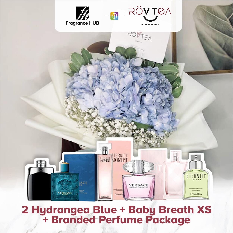 2 Hydrangea Blue+Baby Breath XS + Fragrance Hub Branded Perfume (By: Rovtea Empire from Ampang)