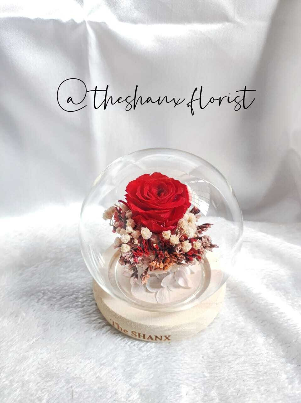 Only You Preserved Flower Glass Globe (By: The Shanx Florist from Melaka)