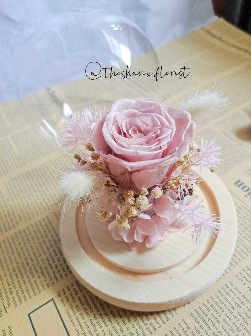 Pink White Theme Preserved Flower Glass Globe (By: The Shanx Florist from Melaka)