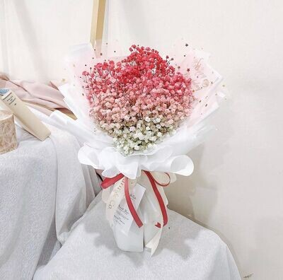 Ombré Baby's Breath (By: Fleurir & Co from Kuching)