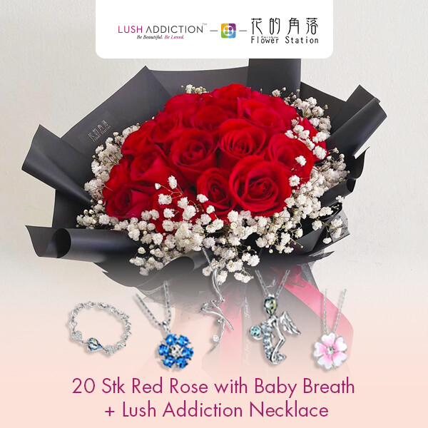 20 Stk Red Rose with Baby Breath + Lush Addiction Necklace (By: Rainbow Flower Station from Cheras)