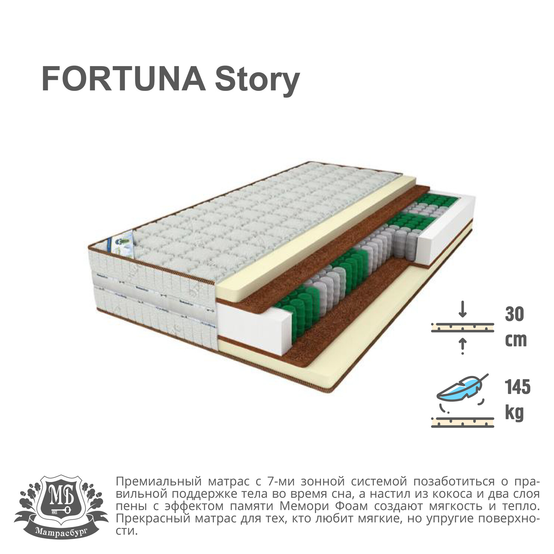 FORTUNA Story