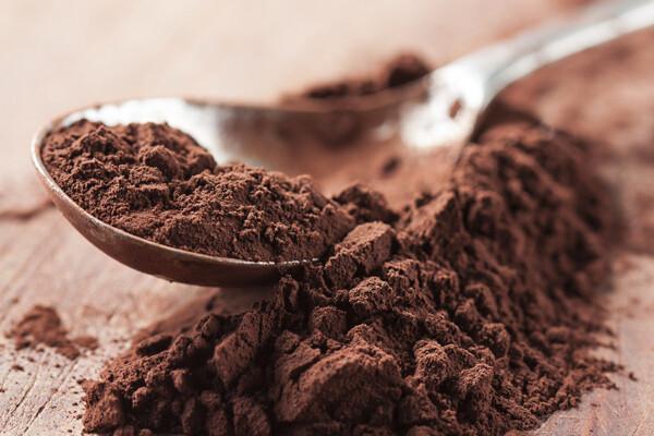 Какао-порошок алкалізований 10-11% (Іспанія), 1 кг.