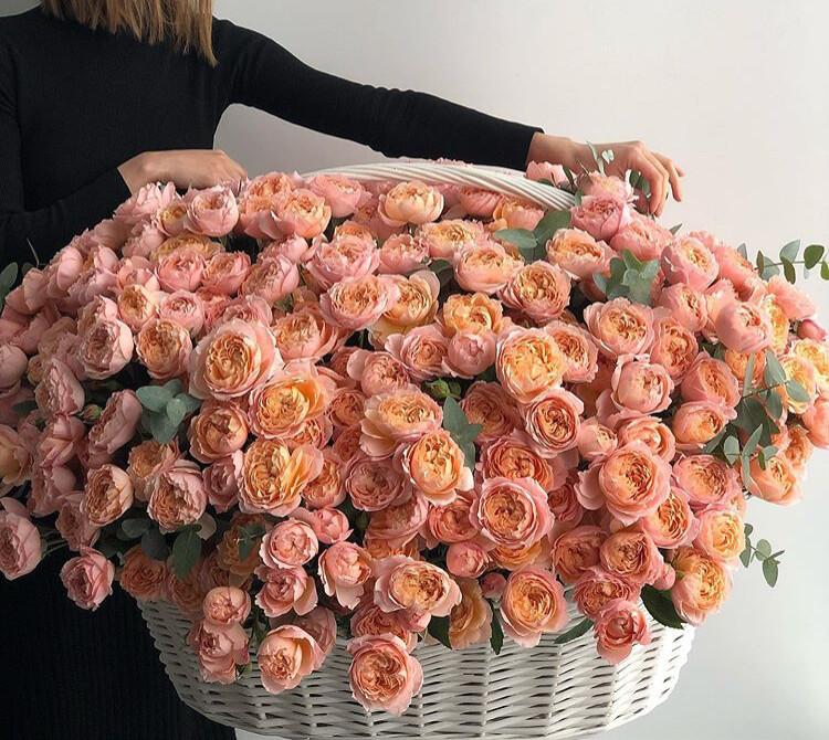 Огромная корзина эксклюзивной роз  Джульетты⚘