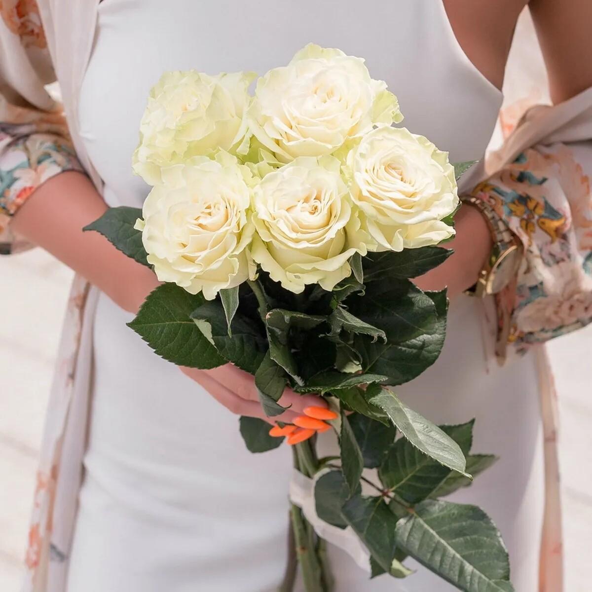 Букет из 5 роз Мондиаль под ленту.