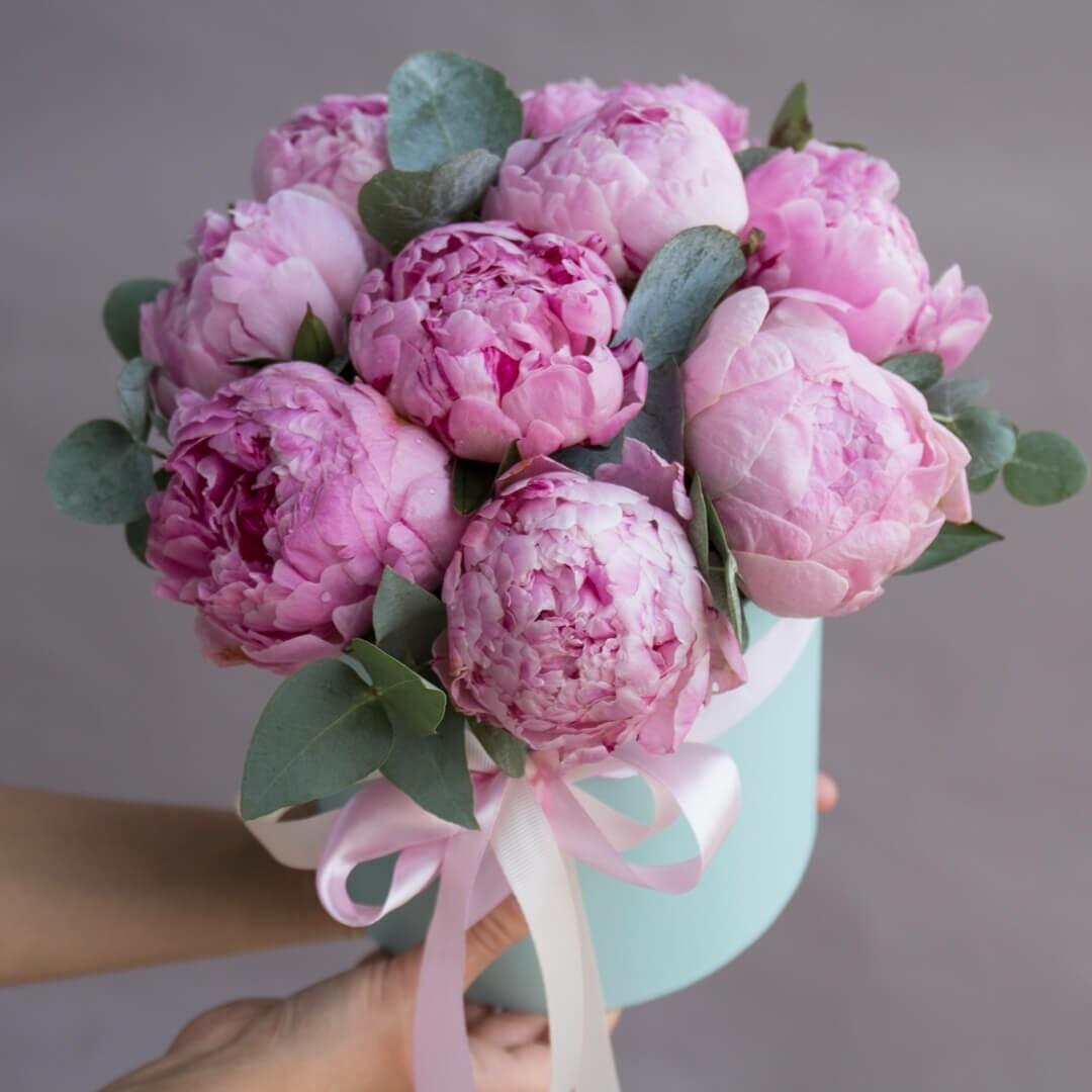 Коробочка пионов Розовое облако☁