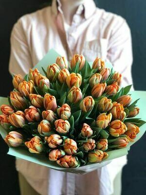 Пионовидные тюльпаны Du Orange Princess.