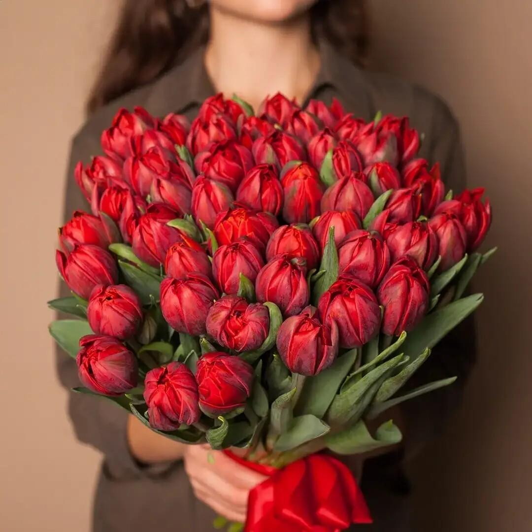 Букет тюльпанов De Red Princess 👸