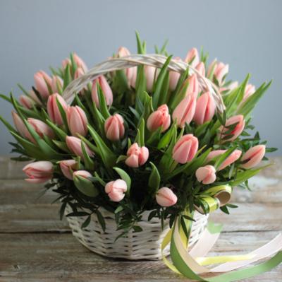 Корзина тюльпанов с фисташкой