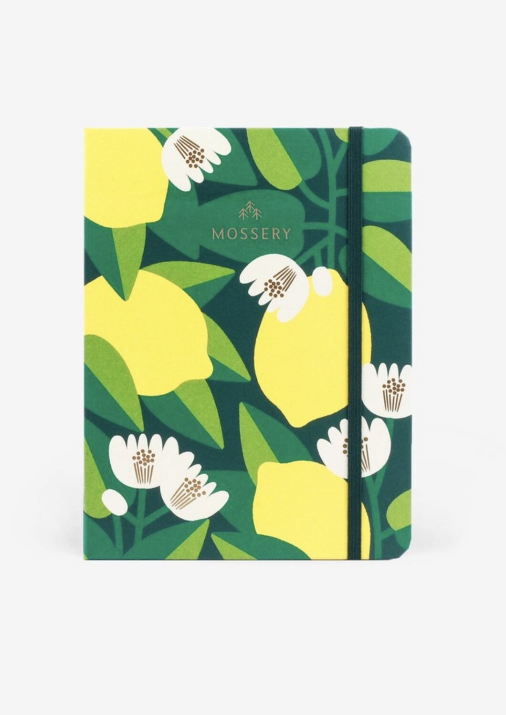 Mossery Sketchbook- Lemon Tree