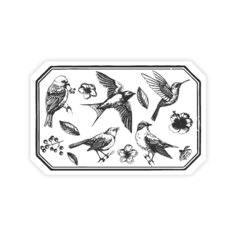 Stamps- Pájaros
