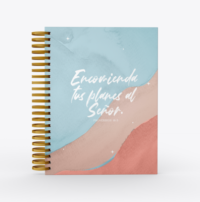 Planificador Dominga Faith- Encomienda