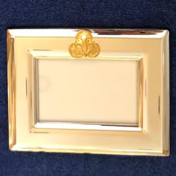 4x6 India Stewart Gold Logo Silver Frame (Horizontal)