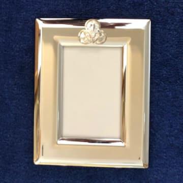 4x6 India Stewart Vertical Frame with Silver Trinity Logo