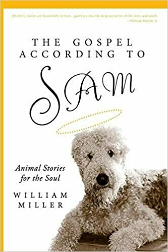 The Gospel According to Sam: Animal Stories for the Soul