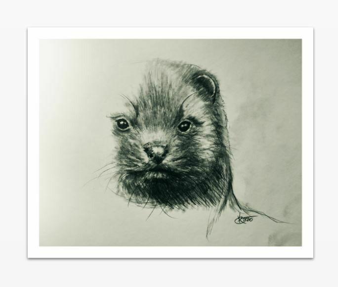 LIMITED ART PRINT - ''Danish minks the 3rd of 11'' 40x50cm