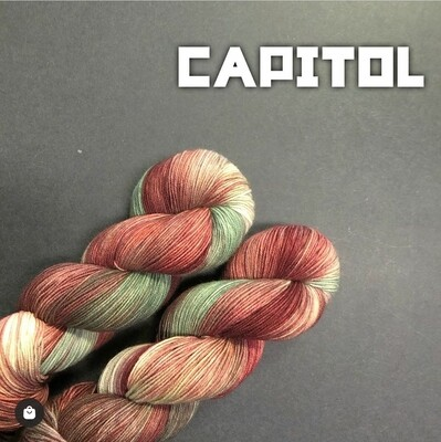 Pride Capitol (Hunger Games)
