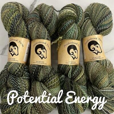 Entropy DK Potential Energy