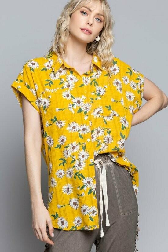 Lemon Daisy Blossom Top
