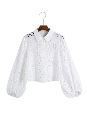 Hollow Embroidery Long Sleeve Top