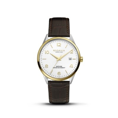 LOCARNO: Gold Bezel Silver Case, Silver Dial, Brown Leather, 40mm