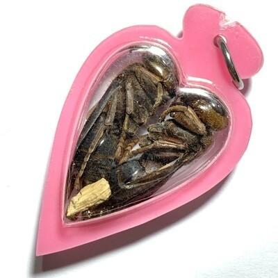 Paya Dtor Ngern Dtor Tong Wicha Lanna Boran Gold-Silver Treasure Bees Takrut & Mai Yae Hyae Pink Casing Kroo Ba Or