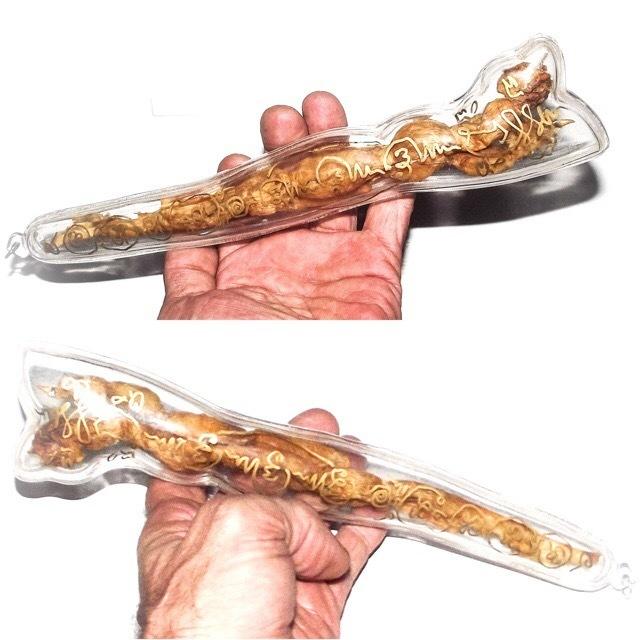 Dueay Ngu Hlueam Dtua Yaks Giant Python Spur 10 Inches - Gambling Talisman & Treasure Guardian - Empowerment by Ajarn Plien and Luang Por Prohm Wat Ban Suan