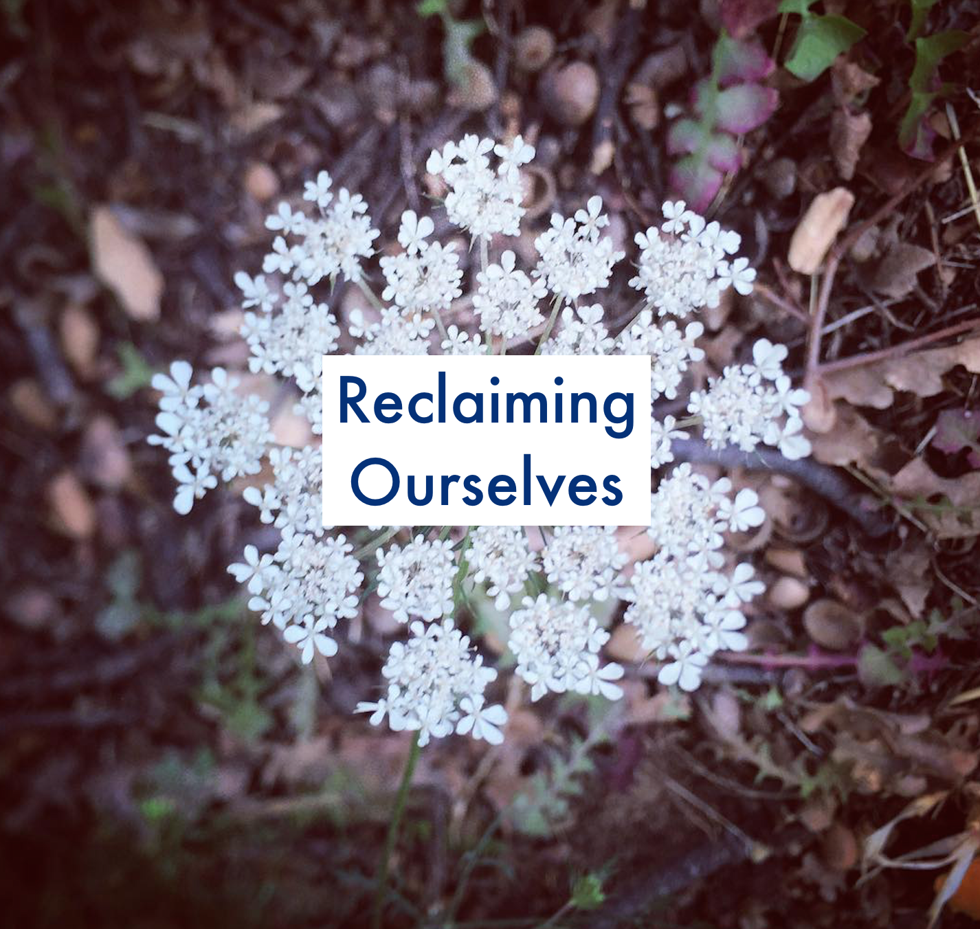 Reclaiming Ourselves - A Community Experience