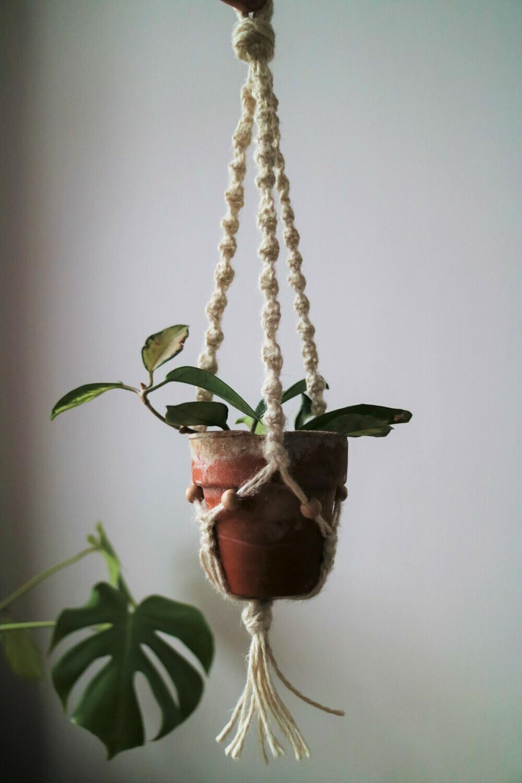 'Maak je eigen plantenhanger met terracotta en macramé'      28/08/2020