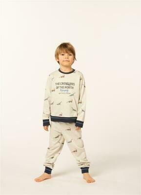 Eskimo Jongens Pyjama: Saurus 2 - 8 jaar