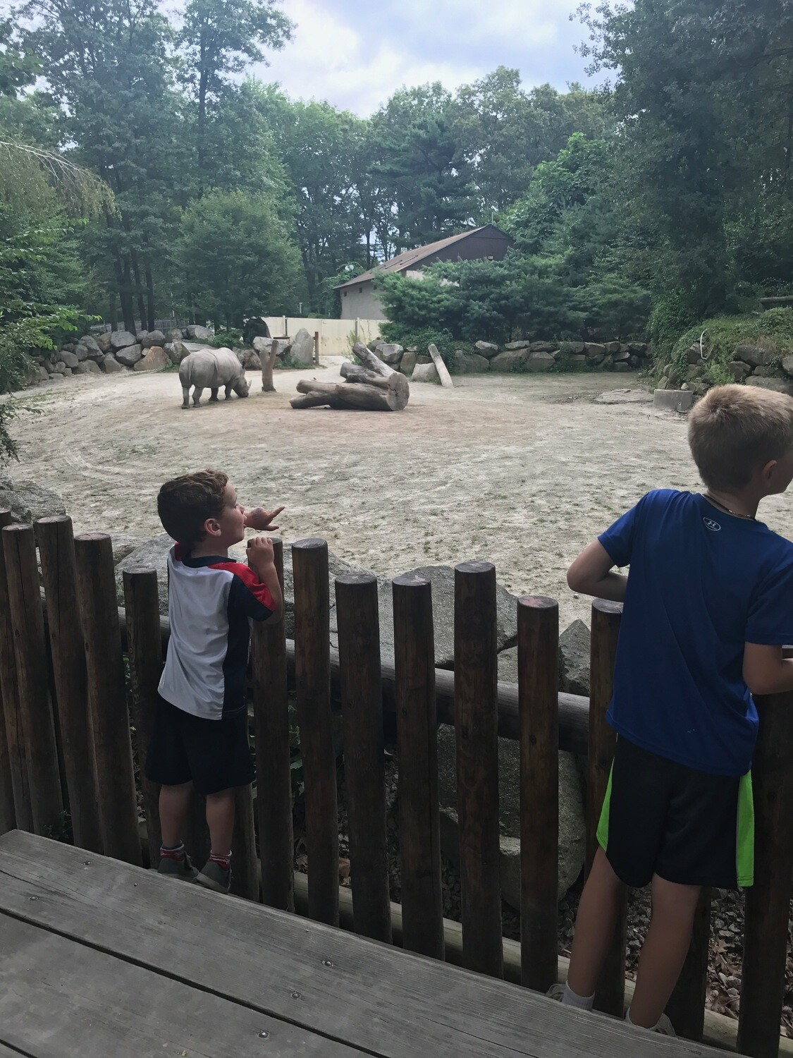 Camp Curriculum ZOO
