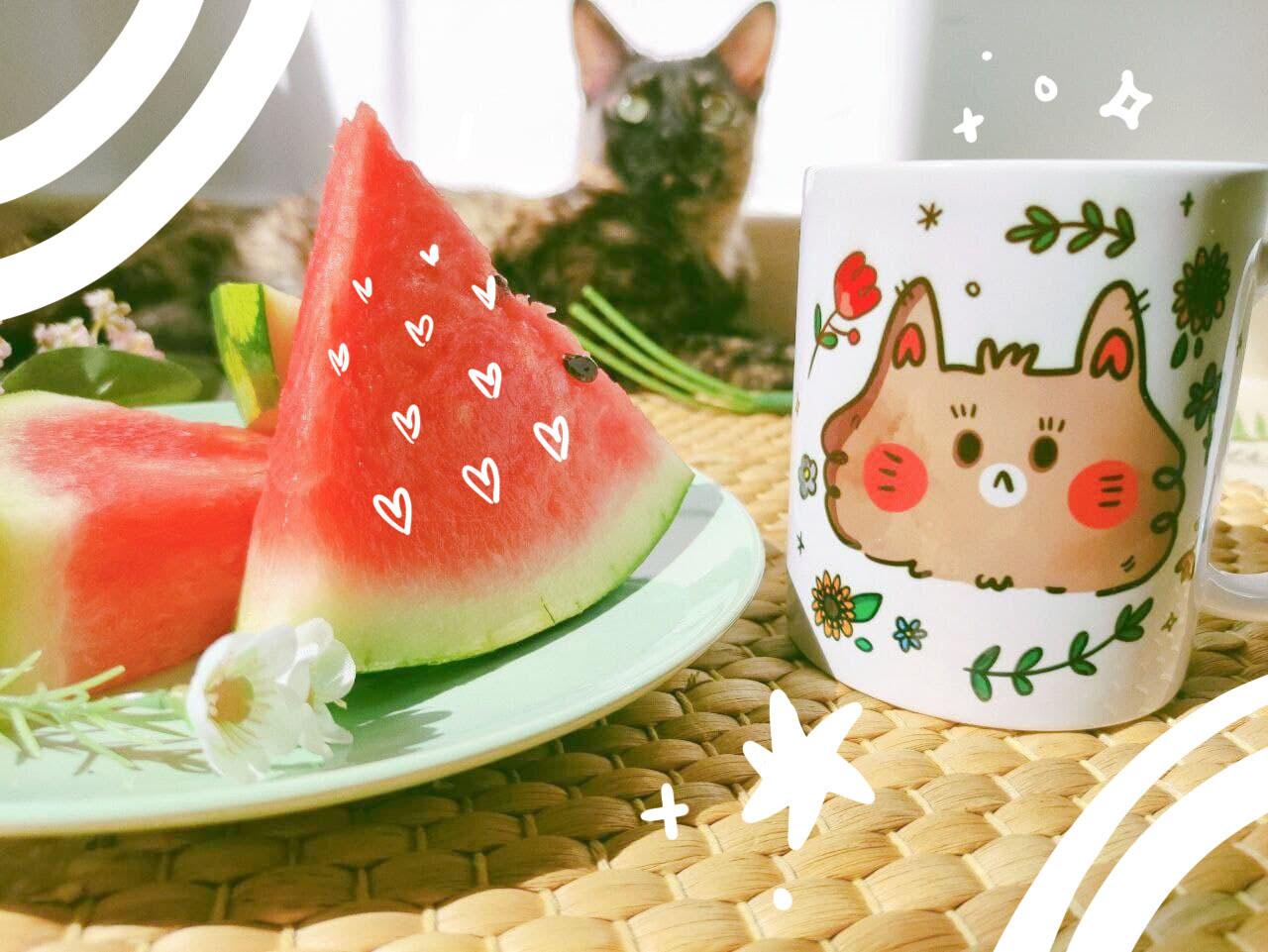 Taza Spring Cat