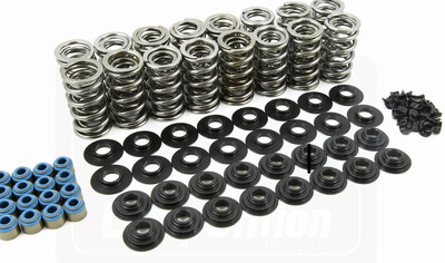 MANLEY HIGH PERFORMANCE DUAL LS  VALVE SPRING KIT
